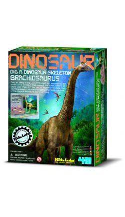 4m(フォーエム)発掘&組み立て ブラキオサウルス