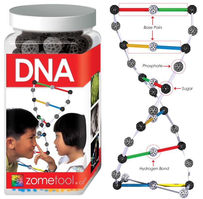 zometool(ゾムツール)DNAキット(新サイズ)